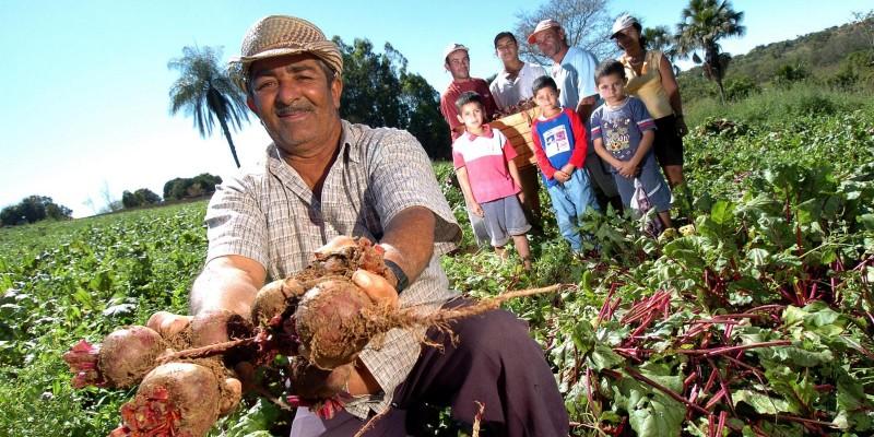 Projeto cria Selo da produção da Agricultura Familiar em Mato Grosso