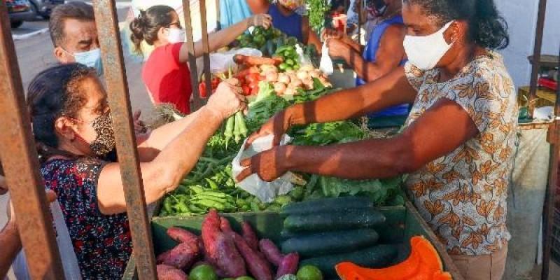 Comércio de produtos da agricultura familiar pode se tornar essencial em Mato Grosso