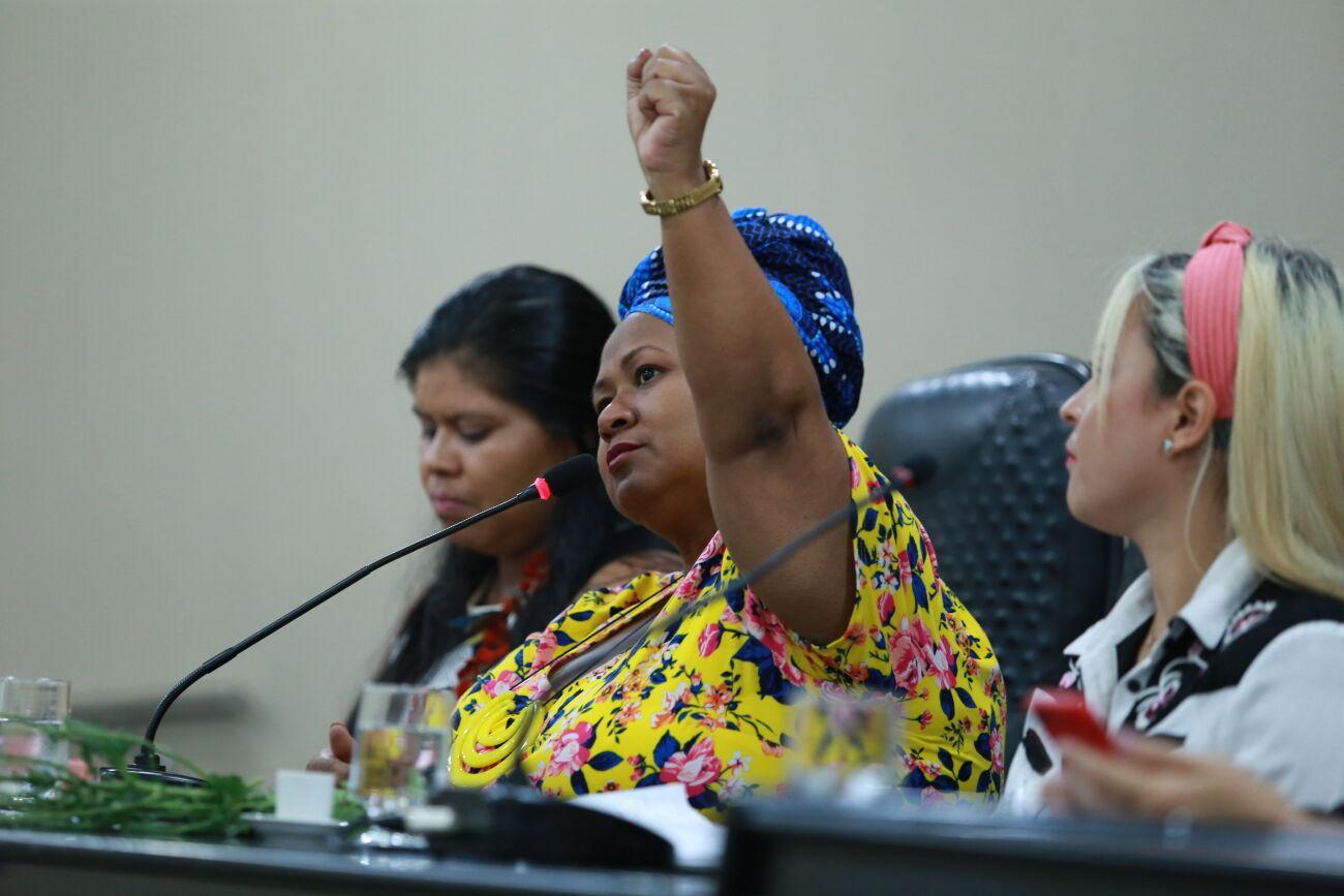 """Audiência Pública debate """"as questões da mulher na sociedade atual"""""""